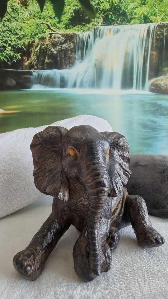 Elefant Statue mit Wasserfall im Hintergrund - Impressionen Chillout Zone - Medizinische Massagepraxis Wildegg